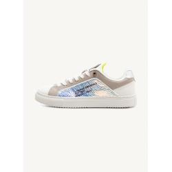 Chaussures Colmar BRADBURY JELLY white/lime