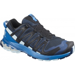 Chaussures de trail Salomon XA PRO 3D V8 sargasso sea/imperail blue/angel falls