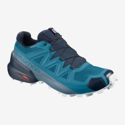 Chaussures de trail Salomon SPEEDCROSS 5 fjord blue / navy blazer / illusion blue