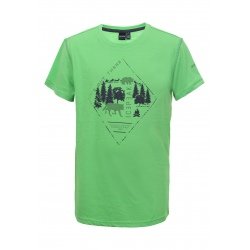 T-shirt Icepeak KEENE JR emerald