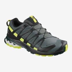 Chaussures de trail Salomon XA PRO 3D v8 GTX Urban Chic/Black