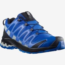 Chaussures de trail Salomon XA PRO 3D v8 GTX Turkish Sea/Black
