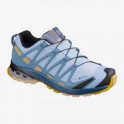 Salomon XA PRO 3D V8 GTX W Kentucky blue hiking shoes