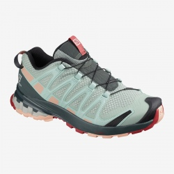 Chaussures de trail Salomon XA PRO 3D v8 W Aqua Gray/Urban Chic