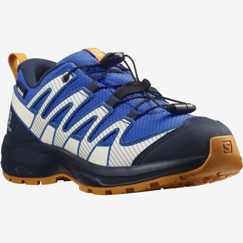Salomon XA PRO V8 CSWP J Palace blue/Navy blazer trail shoes