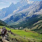 Bonne chance aux participants de l'@utmbmontblanc . #utmb #chamonix #trailrunning #hautesavoie #ultratrail #specksports