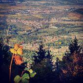 L'automne s'installe vraiment. :) #automne #alsace #bientotlhiver #specksports #onvientsequiper