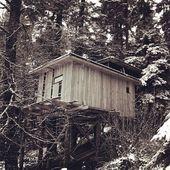 🎰 JEU CONCOURS ! 🔥. A l'occasion de la Saint Valentin, Speck-Sports et @nidsdesvosges vous offrent une nuit pour deux personnes dans une cabane cosy ! 🏠 .Situés près de Gerardmer dans les Vosges, Les Nids des Vosges sont 8 cabanes de charme, de haute qualité environnementale, espacées et perchées dans des arbres, à quelques mètres de hauteur, juste assez pour laisser ses soucis sur terre, prendre de la hauteur et un bon bol d'air…et surtout se sentir dans un autre monde, celui de Peter Pan, de Robin des Bois ou le sien tout simplement. 🌲 🧚♀️ 🌓 .Pour participer il vous suffit de cliquer sur le lien dans la biographie de la page d'accueil Instagram et de remplir le formulaire ! 😇 .Bonne chance à tous 🔥 🌟 .#specksports #speck #niddesvosges #nature #wild #outdoor #outside #concours #game #cabane #arbres
